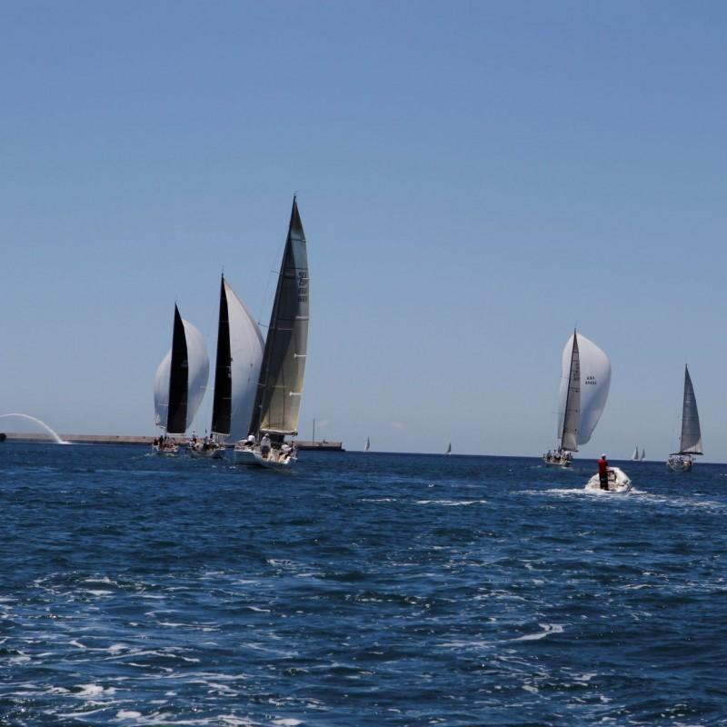 regata carburo de plata31