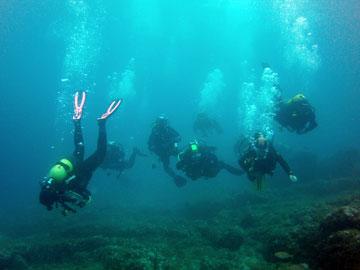 Evolution Divers