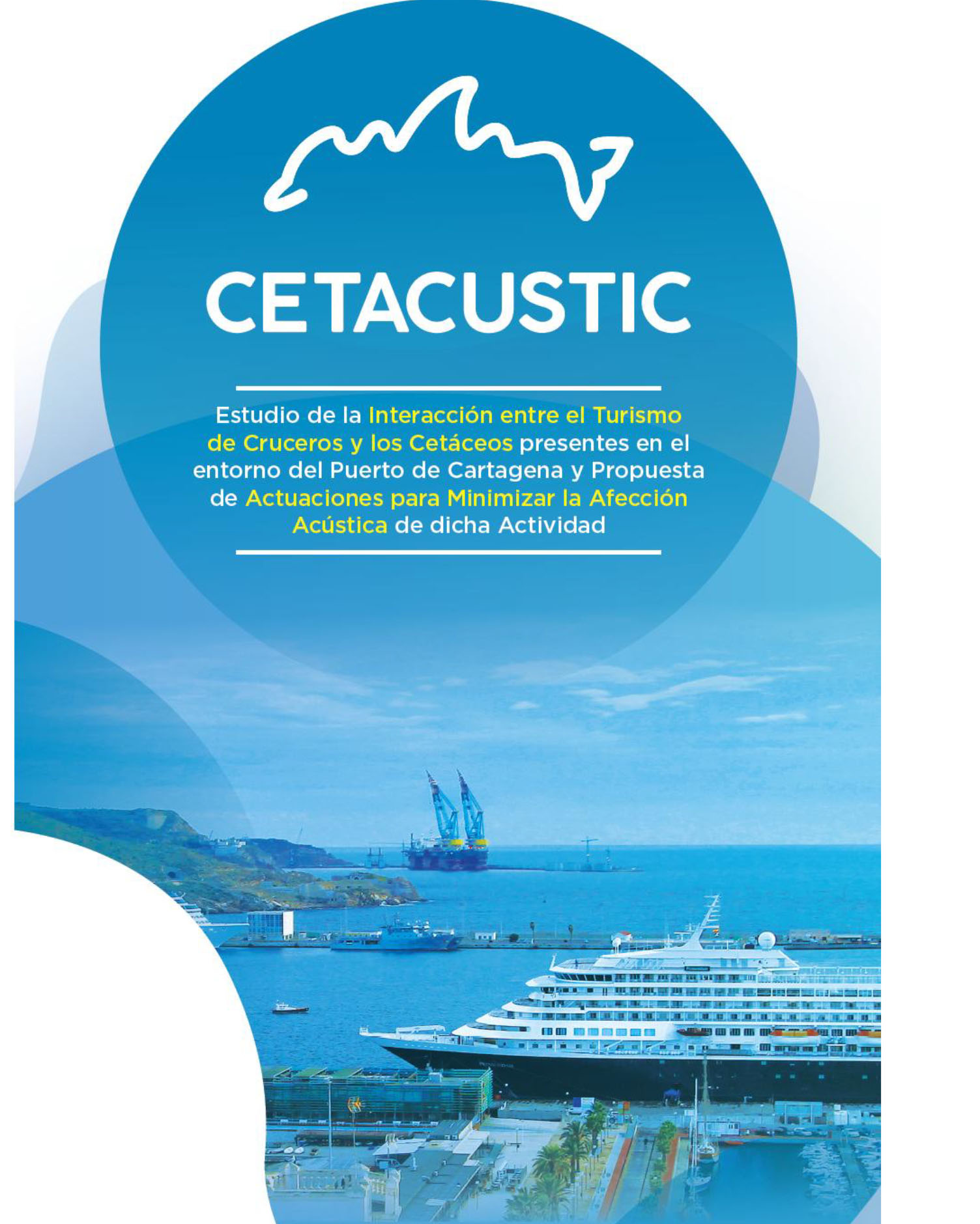 Resumen Ejecutivo CETACUSTIC-1
